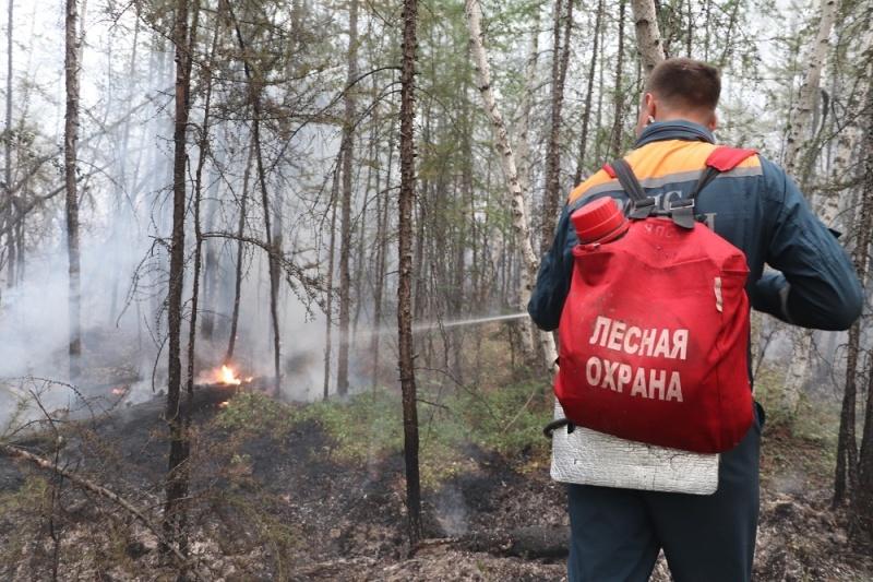 Авиаторами МЧС России слито свыше 9,5 тысяч тонн воды на кромки пожаров